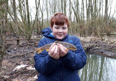 Brook fishing in Wigan