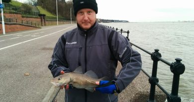 a picture of a Cod Fish caught when fishing at the town hall steps on the Wirral