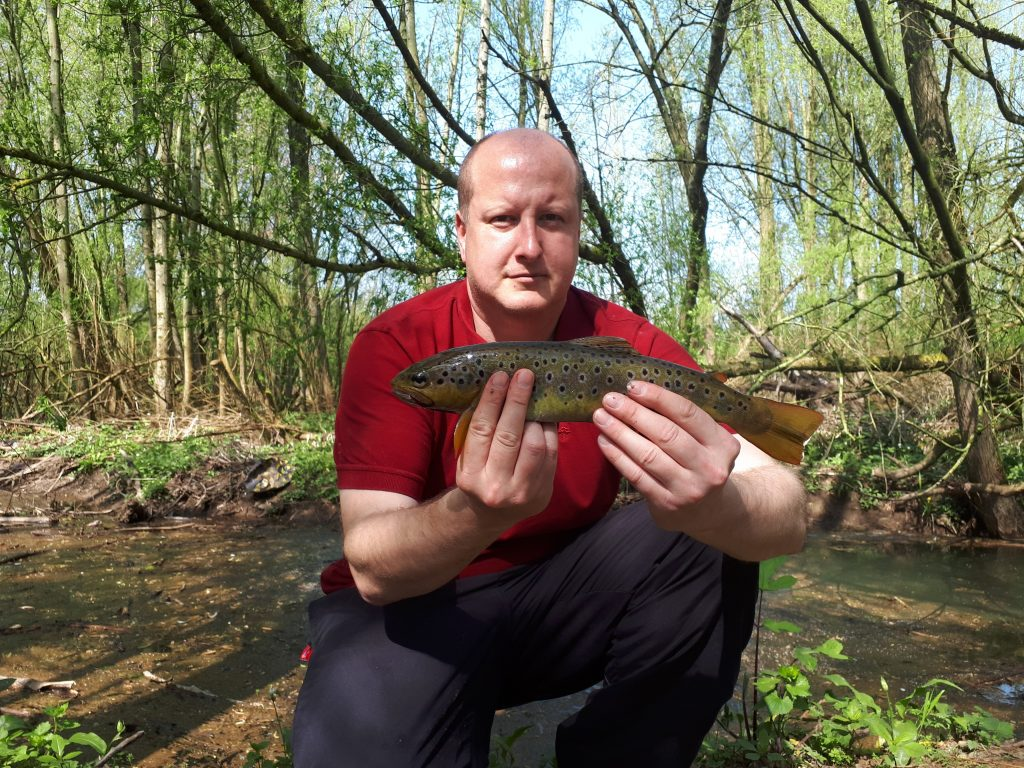 Brown Trout caught in a small brook in Wigan